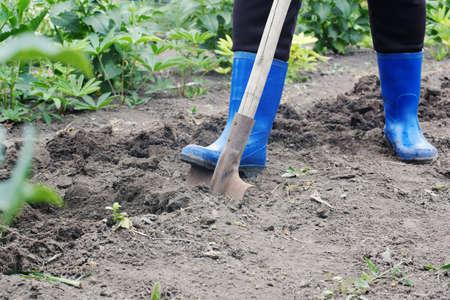 Arbeiter gräbt eine Schaufel im Garten