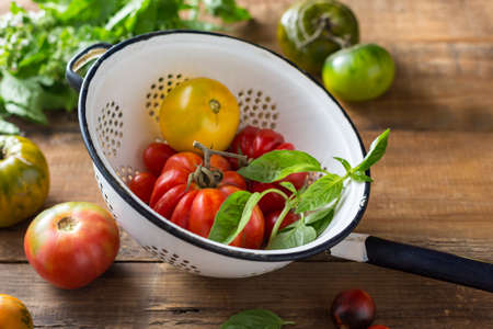 Farm tomatoes and herbs in a colander. Close up.