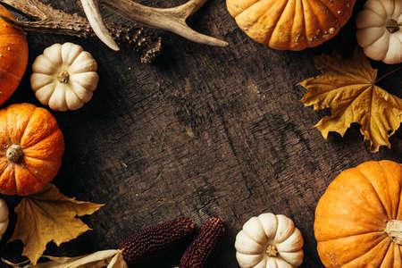 Pumpkins, corn and autumn leaves Reklamní fotografie - 128553860