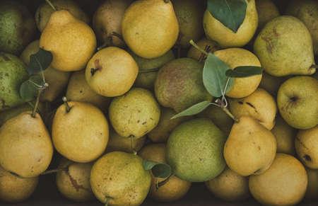 Organic ripe pears in a box, close up. Reklamní fotografie - 130028322