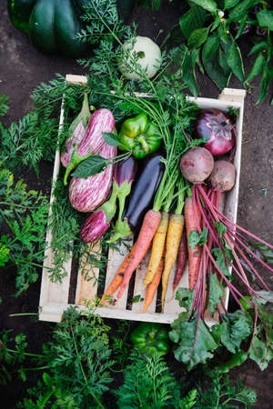 Various organic vegetables in a wooden box