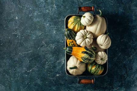 Pumpkins background with copy space. Harvest pumpkins. Reklamní fotografie - 130028649