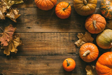 Different pumpkins on a wooden surface. Autumn background with copy space.