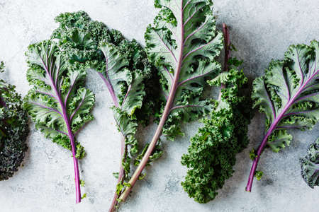 Freshly cut purple Kale leaves on a light textured background. Clean food. Healthy product. Reklamní fotografie