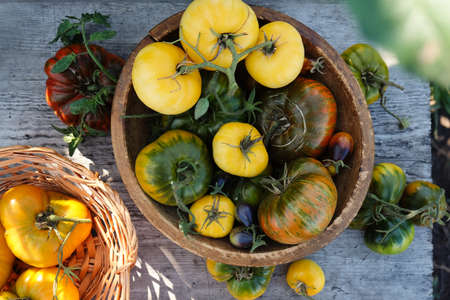 Various colorful tomatoes in a bowl