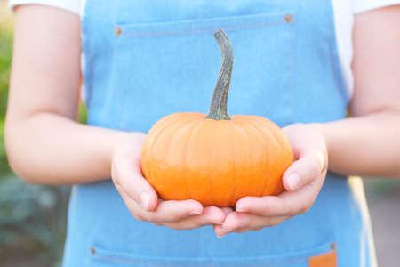 Gardener holding home grown organic pumpkin