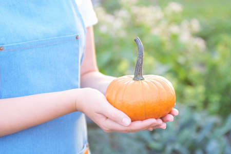 Young woman holding a small pumpkin.