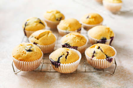 Freshly baked homemade blueberry muffins on a cooling rack. Selective focus. Stock fotó