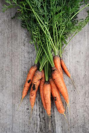 Organic carrot eaten by pests, larva of the carrot fly. Stock fotó