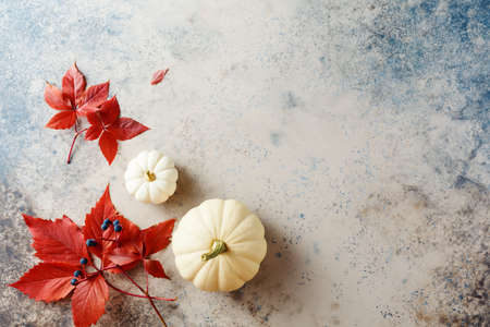 Small white pumpkins and red autumn leaves, autumn background. Top view. Copy space. Stock fotó - 156155971