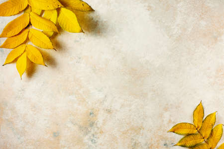 Autumn background with yellow lleaves, copy space. Stock fotó - 156418383