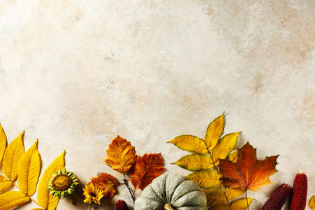 Autumn background with pumpkin and colorful leaves, top view. Copy space. Stock fotó - 156418299