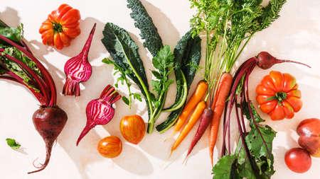 Fresh organic seasonal vegetables, carrots, beet, kale. Ingredients for cooking. Stock fotó - 156474106