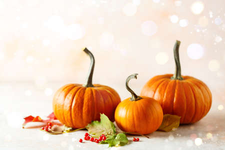 Autumn holiday background with pumpkins Stock fotó - 156786803