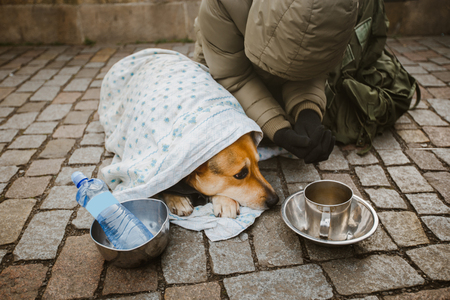A beggar beggar begging with a dog wrapped in a blanket to ask for help in the city of Prague in winter cold.