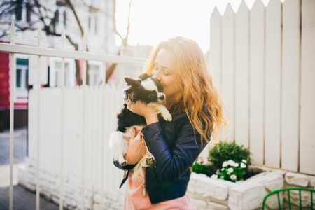 A young red-haired Caucasian woman holds a small funny dog in the arms of two colors of black and white chihuahua. Hugs and kisses love shows against a white wooden fence at sunset.