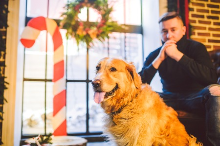 The theme is the friendship of man and animal. Caucasian young male and pet dog breed Labrador Golden Retriever at home inside in winter. Christmas time, New Year holidays. Standard-Bild - 115334528