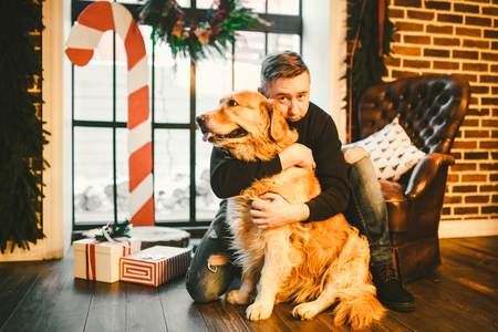 The theme is the friendship of man and animal. Caucasian young male and pet dog breed Labrador Golden Retriever at home inside in winter. Christmas time, New Year holidays. Standard-Bild - 115334576