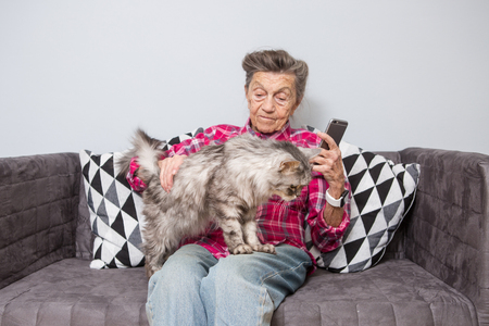 very old senior Caucasian grandmother with gray hair and deep wrinkles sitting home on sofa in jeans and shirt with gray fluffy shaggy cat and using smart phone technology in hands. Pensioner and pet.