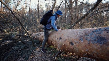 Une jeune touriste avec un sac à dos enjambe un arbre tombé dans la forêt avec un sac à dos. Randonnées à thème tourisme en forêt. Surmonter les difficultés et les défis Banque d'images