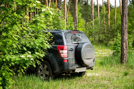 Off-road crossover car stands parked in a dense coniferous forest. Stock Photo