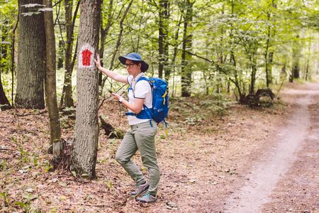 Hiking marked trail in the forest. Marking the tourist route painted on the tree. Touristic route sign. Travel route sign. Tourist hiker with backpack navigation uses smart phone.