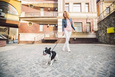 Woman and dog. Outside, happy. theme is the friendship of man and animal. Girl with chihuahua. young woman and her dog chihuahua outdoors walking by the street. dog pulling on leash. Reklamní fotografie