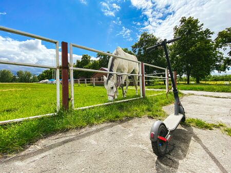 Horse in the arena. In the stall is a beautiful white horse. An electric scooter is parked near the horse arena. Animal and electric transport. Past and future are near. Eco friendly mobility concept. Banque d'images