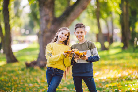 Happy Caucasian siblings enjoying in autumn day in park, sunny weather. Kids having fun holding fallen yellow leaves in nature. Funny twins in autumn park. Autumnal mood. Teenagers posing embracing.