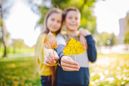 Friendship between siblings. Siblings together outside with bright colored background. Kids autumn portrait. Brother and sister playing in autumn park leaves. Family active fall weekend concept.