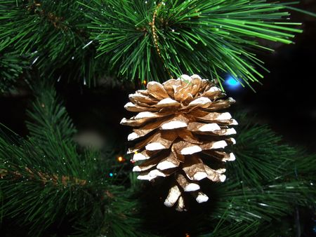 Artificial pine cone on the christmas tree photo
