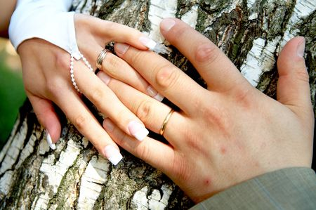 bride and groom holding hands Stock Photo - 3230451