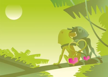 monkeys baboons steam male female twilight jungle bushes palms shrubs leaves vines tails the figure of the heart