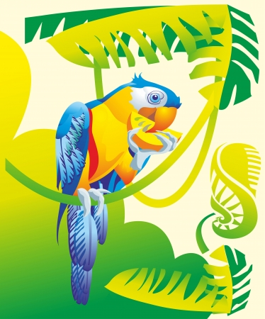 African Grey parrot macaw cockatoo bite of citrus fruit vine jungle tropical forest flora fauna Illustration