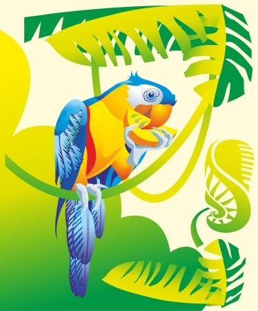 African Grey parrot macaw cockatoo bite of citrus fruit vine jungle tropical forest flora fauna Illustration