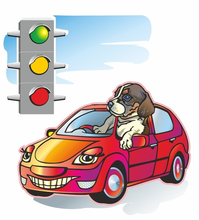 puppy dog driving a car looking out the window at the traffic light is lit red yellow green