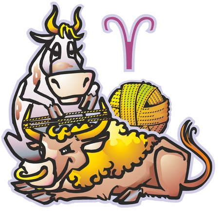 two pair of bull ox cow heifer calf weaving yarn from fleece yarn ball on the horns sign zodiac symbol