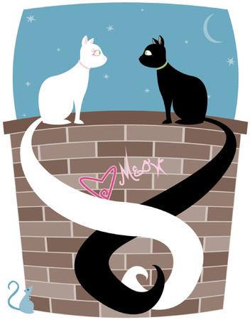 Schwarz-weiße Katze Katze auf einer Mauer, Schwänze umschlingen ... Mäuschen sieht bis auf das Paar  Standard-Bild - 607450
