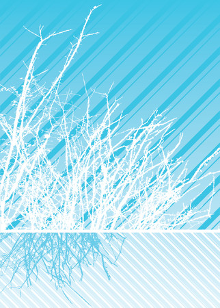 stark: Stark branches against diagonal stripes, reflected in cool shades of winter blue and white