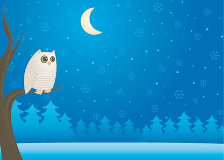 Weiße Eule auf einem Zweig in der kalten Winternacht - Mond und Schneeflocken in den dunklen Himmel
