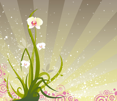 An orchid plant rising up in front of a radiant bursting background Illustration