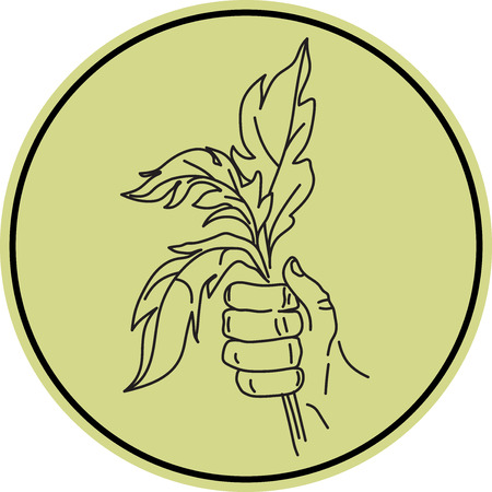 liking: A Vector symbol of friendship and mutual sympathy illustrated with a hand holding a bunch of leaves Illustration
