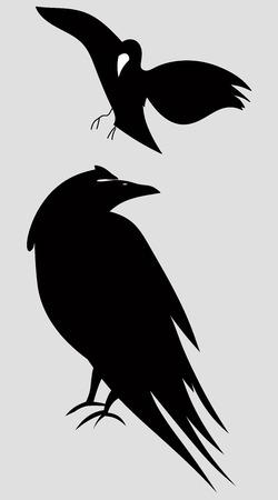 Schattenbild von Vögeln oder von Raben, Vektorgrafikikone