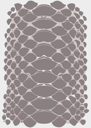 vector graphic linear background of snake skin