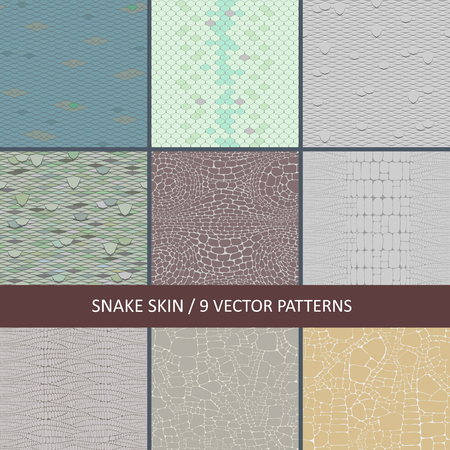 set of vector seamless snake skin textures