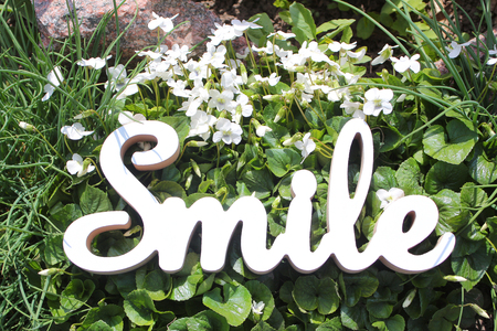positive text smile on a grass background with flowers Banco de Imagens