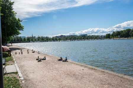 Panoramic view of the Beautiful sea with birds relaxing on the shore in Helsinki Finland Europe