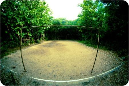 Un terrain de football au milieu des arbres