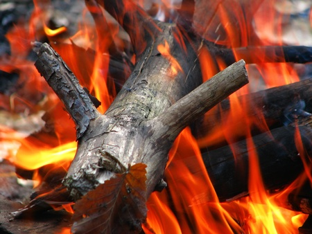 chock: wood in the fire Stock Photo