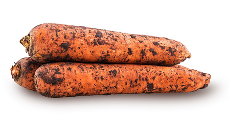 Heap of freshly excavated carrots, dirty, with earth  isolated on white background. Clipping Path. Stock Photo